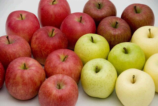 色々な種類のりんご。